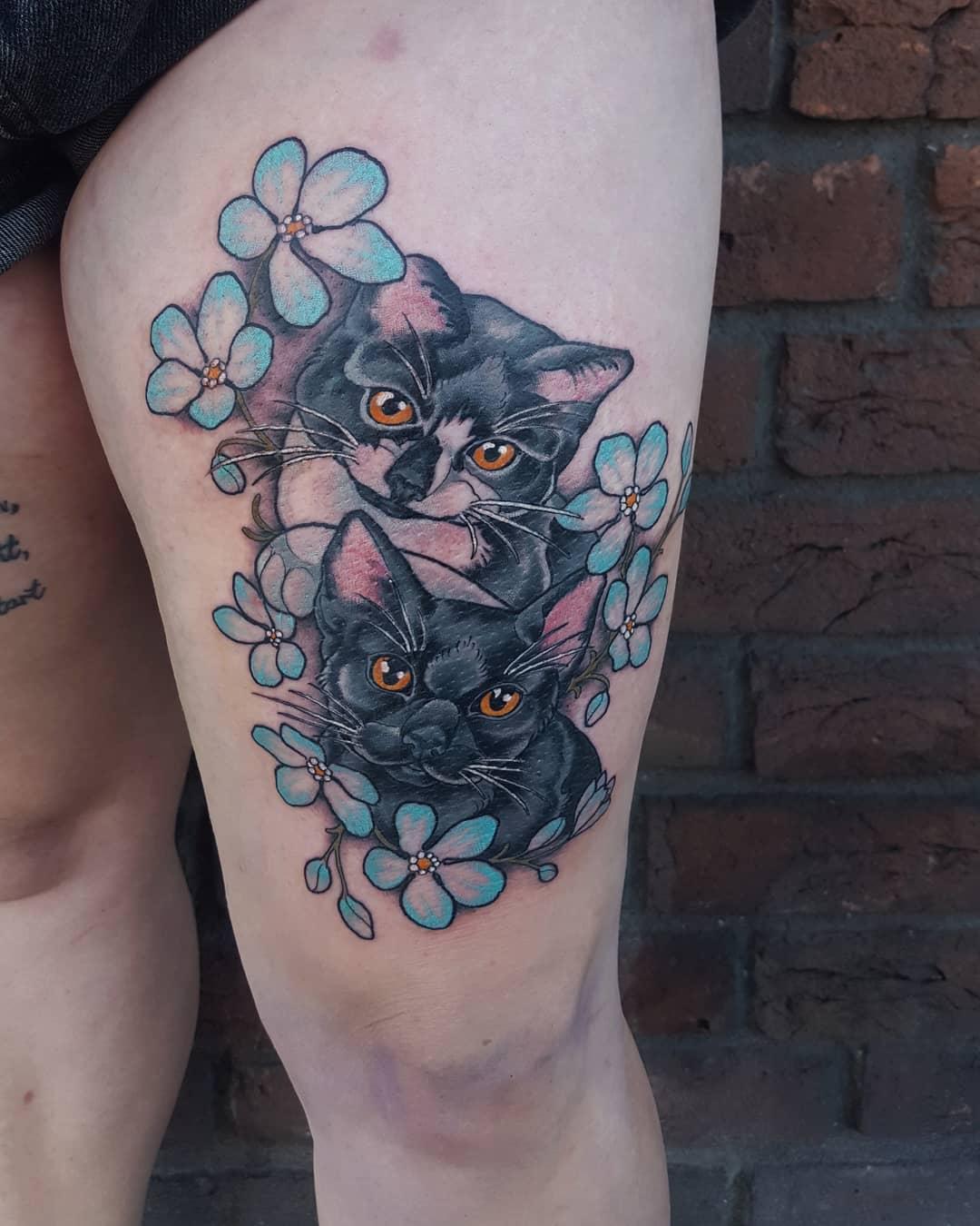 !!! Cat Content !!! Ein Hoch auf die tapfere Verena  #catsbeforebrats #kittypowe