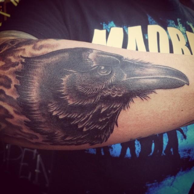 Corvus Corax #tattoo #tattooing #raven#raventattoo#corvuscorax#blackandgrey #bla...
