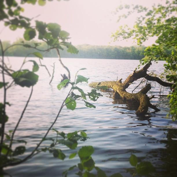 Home. #ruhrpott #ruhrgebiet #herten #recklinghausen #ewaldsee #sea#lake#water#fo...