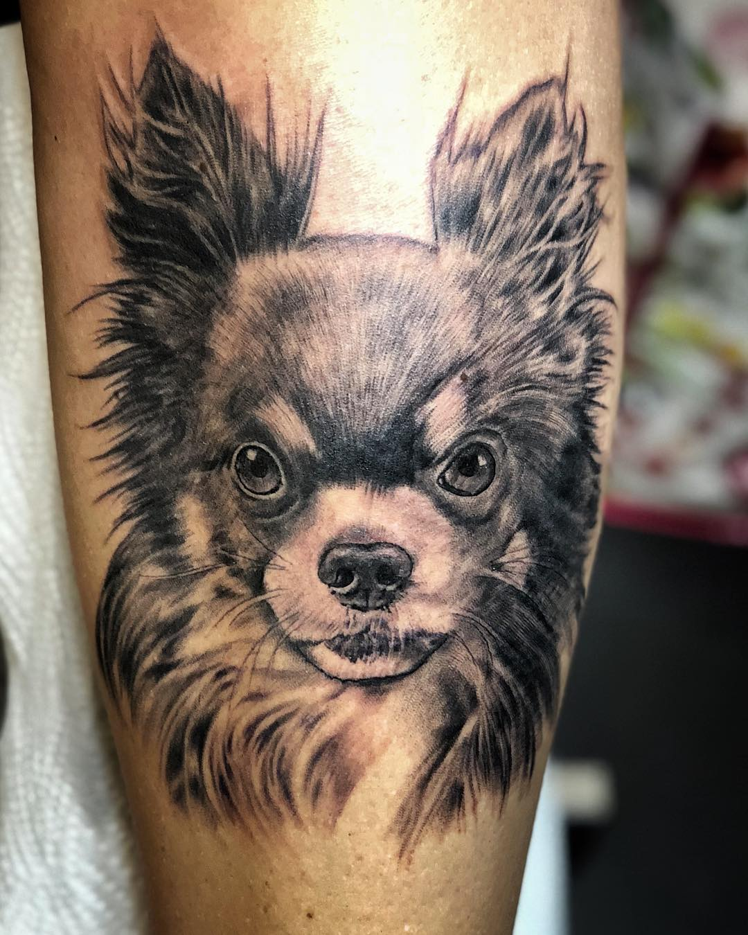 One more puppy dog for Nora . . . #tattoo#tattooing#blackwork#blackworkers#black...