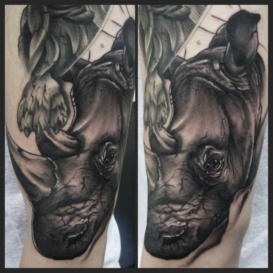 Rhino from today. thank you max for being amazingnand hard as fuck #germantattoo