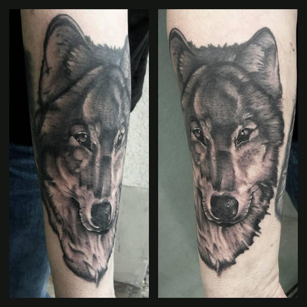 Todays work.....thx again Karl-Heinz for your trust #germantattooers #wolf #wolf
